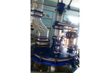 Glass reactor