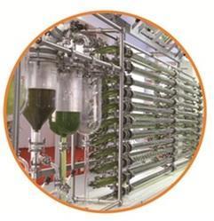 Glass Photo Bioreactor